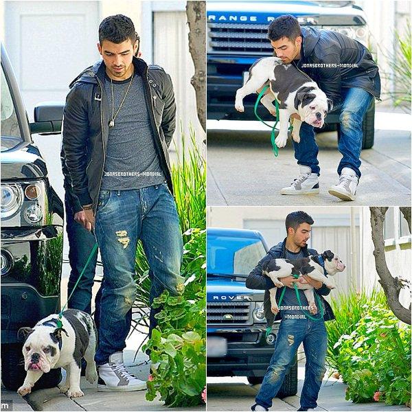 Le 25 mars 2011 : Joe Jonas avec Winston à Los Angeles. Le 25 mars 2011 : Joe a été vu au volant de sa Mercedes Benz G-Wagen avec un ami dans l'après-midi à West Hollywood, en Californie. Le 25 mars 2011 : (soir) Joe est allé en boîte de nuit  Trousdale à West Hollywood, en Californie.