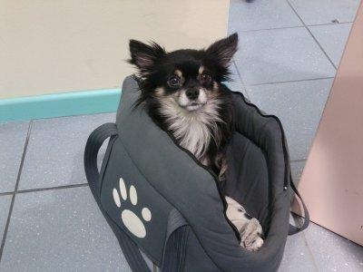 mon sac à moi :)