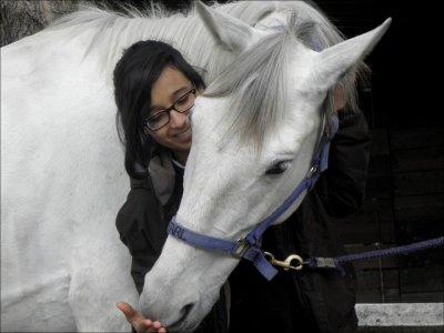 « L'air du paradis est celui qui souffle entre les oreilles d'un cheval. »  L'air du paradis soufflait bel et bien, entre les oreilles de ce cheval.