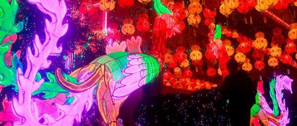 Bon nouvel an lunaire 2017 : place au Coq !
