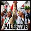 Palestine tu l'aura ta terre !