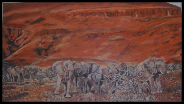 terminer (troupeaux d'éléphants sauvages)