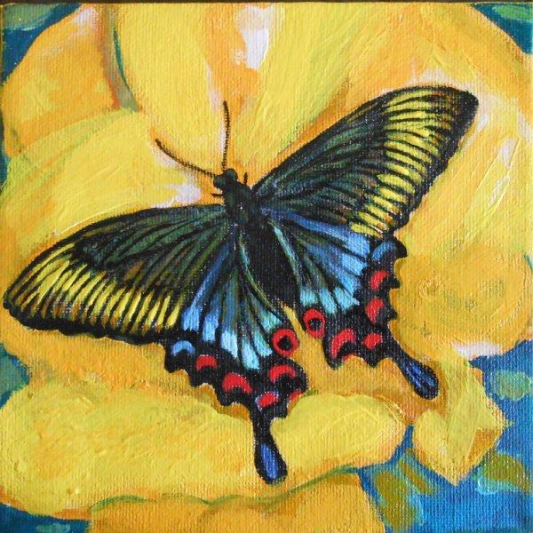 papillon sur fleur jaune ( peinture acrylique sur toile 15x15cm)