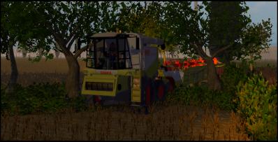 Moisson du blé (2° parcelle)