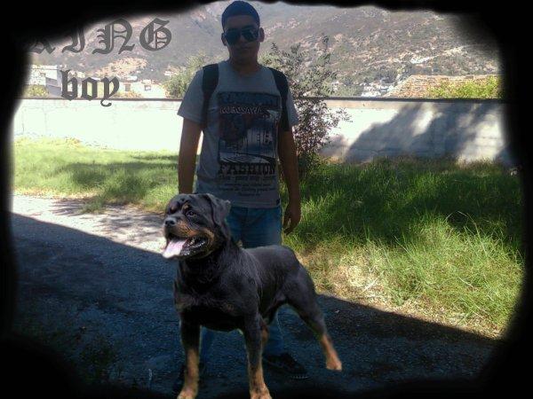 me and rodviler