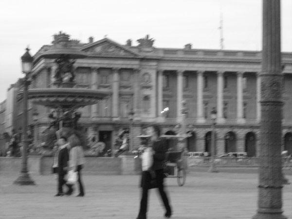 Pigeon de Paris.   †