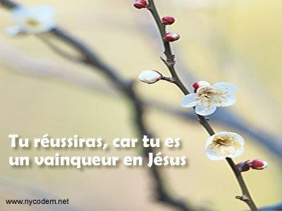 Jésus, mon Sauveur