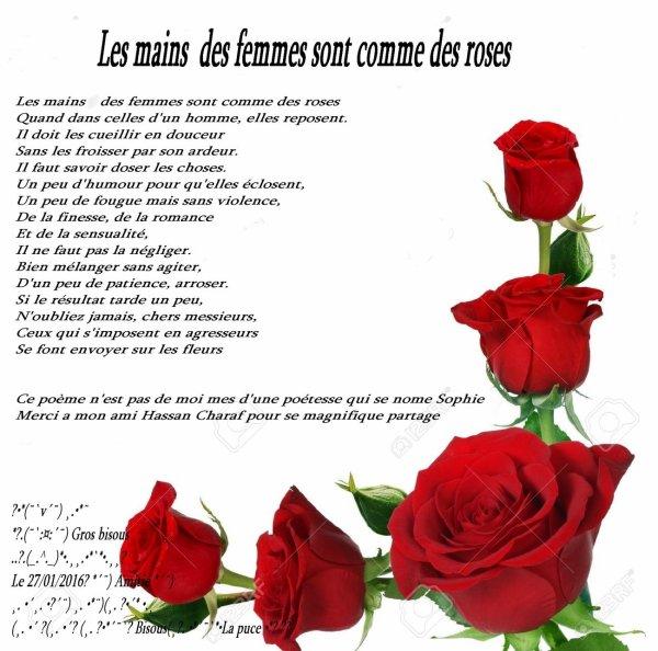 Les mains  des femmes sont comme des roses