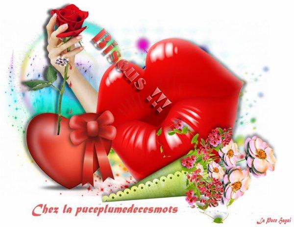 Bonjour les amis(es) Je vous souhaite une bonne fin de journée