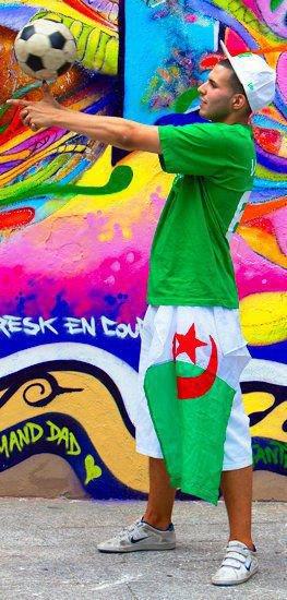 algerie toujour