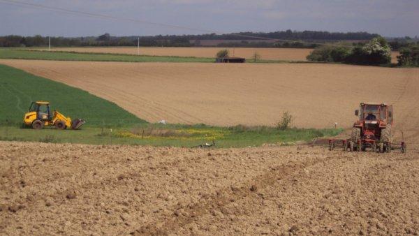semis de mais2012