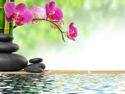 Un Peu De Detente De Zen Attitude Pour Pouvoir Continuer A