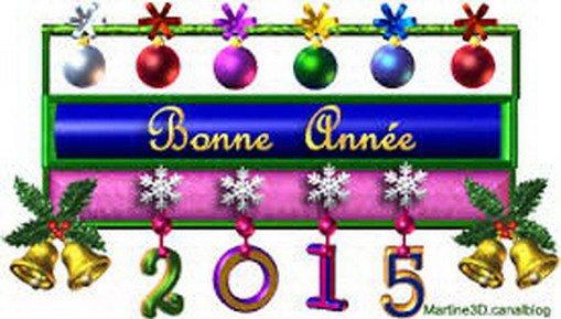 BONNE ANNEE 2015...............