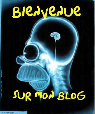 bienvenue sur mon mon blog