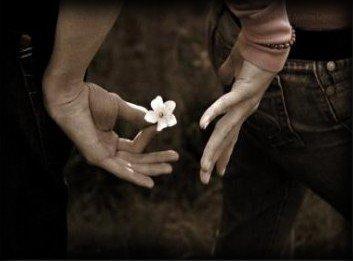 La vie est une cerise - La mort est un noyau - L'amour un cerisier