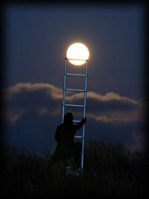 Les étoiles filantes sont comme des larmes de lumière qui coulent dans le ciel, vers l'inconnu,  sans que l'oeil attentif ne les perde de vue. (Tony Rebecchi)