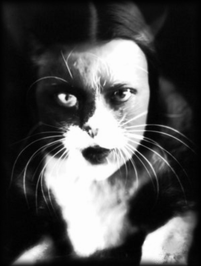Les chats tout comme les roses ne griffent que ceux qui ne savent pas les prendre...
