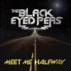 • Meet Me Half Way (2009)