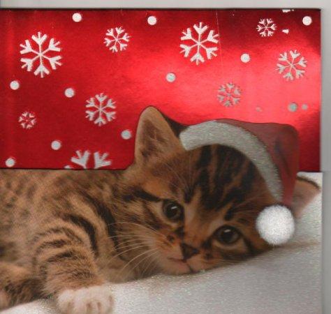 Un Joyeux Noel à tous