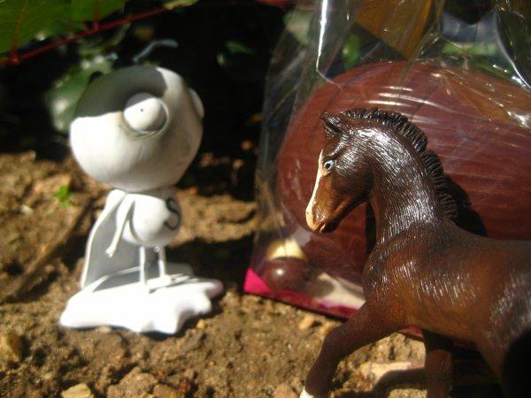 Histoire exlusive Pâque: L'Organisation CH2N