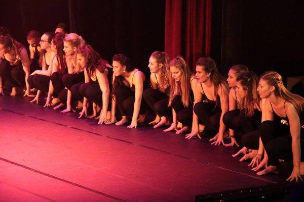 « La danse est l'art de tout dire avec des gestes »