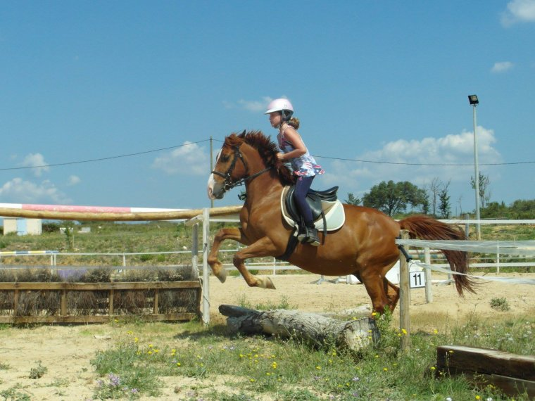 petit saut mais grand cheval ( d'habitude je saute bien plus haut )