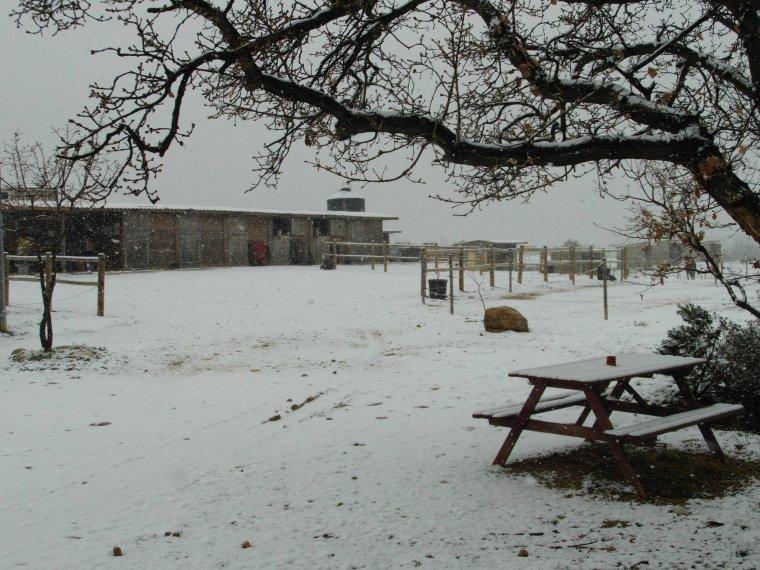 mon centre equestre sous la neige !!!