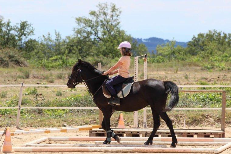 MON HISTOIRE 3 ( le cheval )