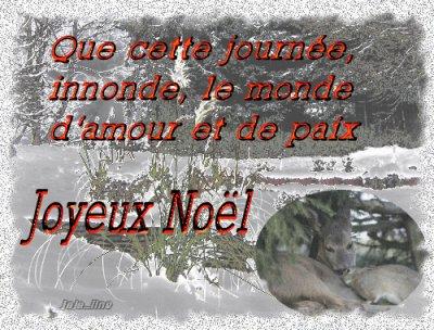 Joyeux Noël à tous mes amis et amies