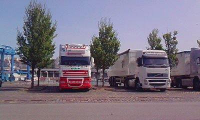 hollandais