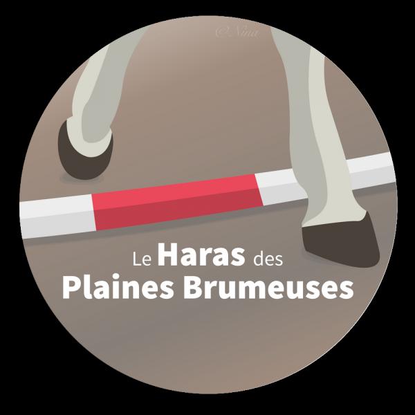 Présentation du haras des plaines brumeuses