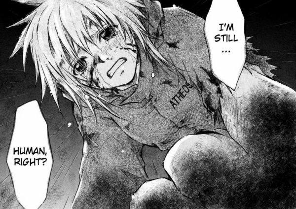 """Aiko se retrouve orpheline après le décès de sa famille, entièrement décimée par d'étranges monstres : les """"chimères"""". C'est dans un lit d'hôpital que la jeune fille se réveille, seule survivante du massacre, le bras gauche maintenant métamorphosé par une mystérieuse organisation.  Attaquée à nouveau dans sa propre chambre, Aiko découvre alors le terrifiant pouvoir de son nouveau bras, et décide finalement de s'en servir pour combattre les chimères..."""