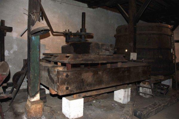 1584 - Sortie à Gradignan le 04 novembre (suite)