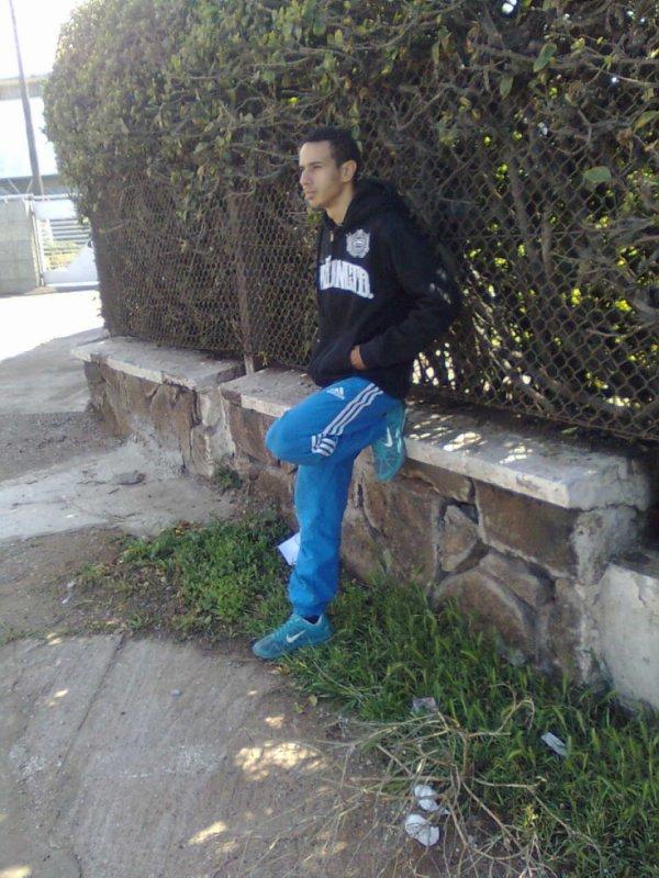 ayoub__2014