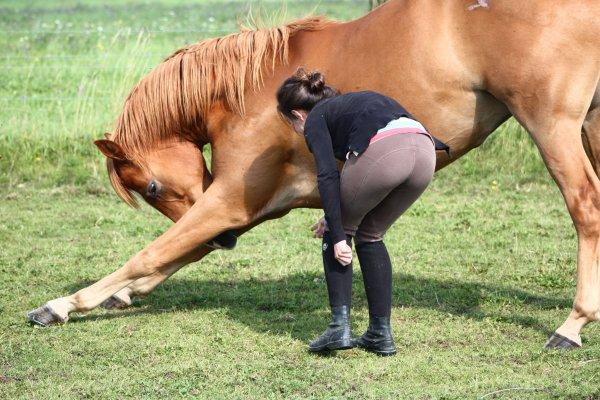 Loulou mon petit cheval d'amour ♥♥♥