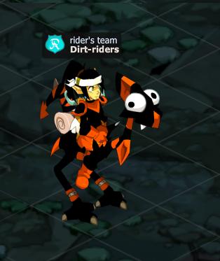 La rider's team
