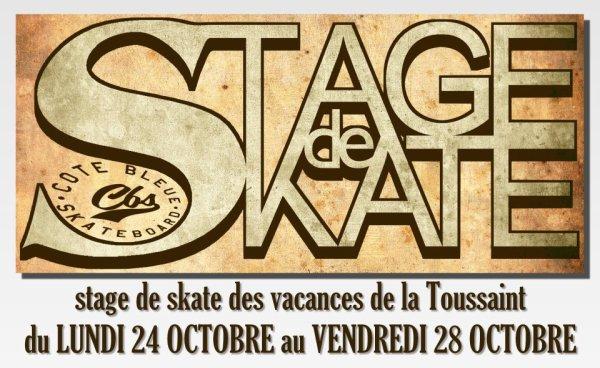 STAGE DE SKATE