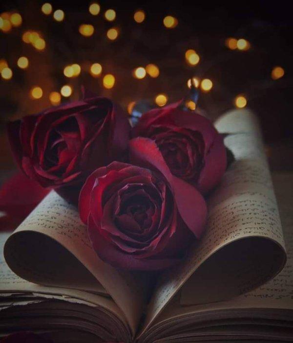 Le livre de la vie n'est pas livré avec tout ce qu'elle comprend. Elle n'est pas rose sans épines et ses épines  vous mènes  parfois très  bas.