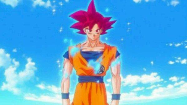 Goku vs beerus
