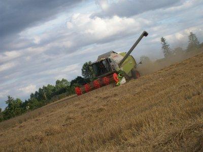Moisson de blé 2010
