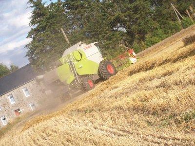Moisson de blé 2010  Suite