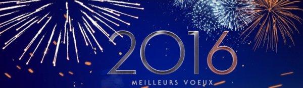 MEILLEURS VOEUX POUR L'ANNEE NOUVELLE
