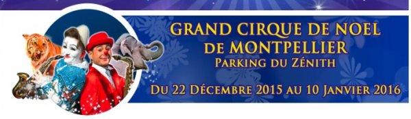 LE GRAND CIRQUE DE NOEL MEDRANO DE MONTPELLIER (1)