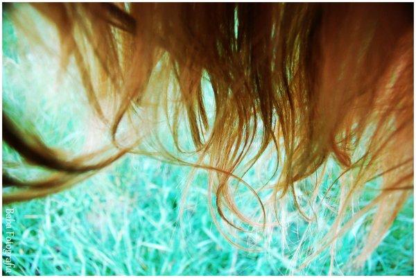 ~ La beauté du ciel est dans les étoiles, la beauté des femmes est dans leur chevelure ~