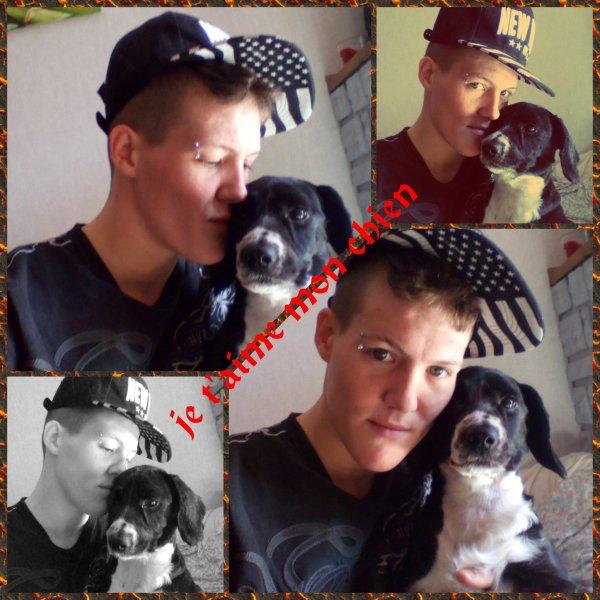 Chasta mon amour de chien