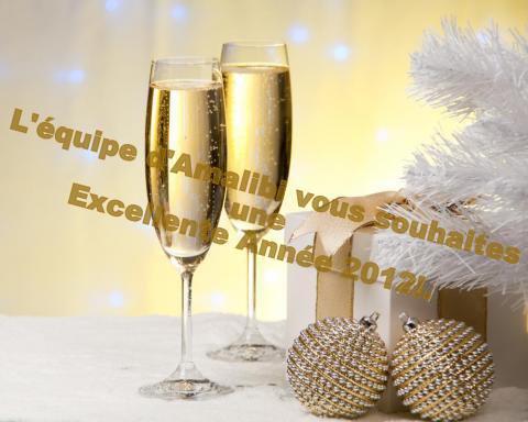 BONNE ANNÉE 2012 !!!