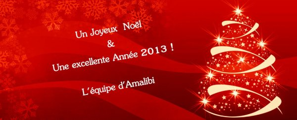 Joyeux Noël   &   Bonne Année 2013