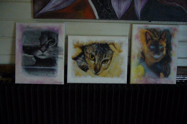 Christine Laeticia Delafont Apchain À l'instant ·  Pour l'exposition sur les chats de 12 au 21 mai 2017. toile a/4