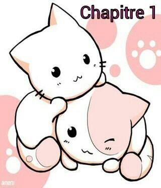 Chapitre 1 - School fic One Piece