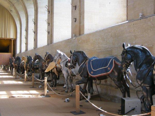 Ecurie royale de Chantilly